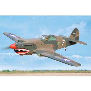 Black Horse P-40C Tomahawk 60cc ARTF w/retracts BH161
