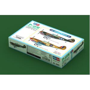 P-40M Kitty Hawk 1:48 #85801