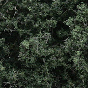 Fine-Leaf Foliage (Dark Green) #F1130
